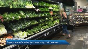 Why Canada's food insecurity could worsen