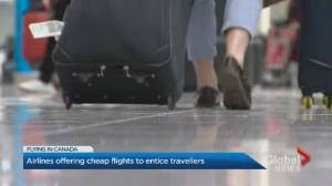 Why industry experts are warning travellers about booking cheap flights (01:48)