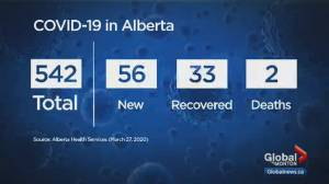 Alberta sees 56 new cases of COVID-19, brings total to 542 on Friday