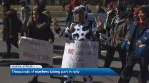 Thousands of teachers taking part in rally at Queen's Park Thursday