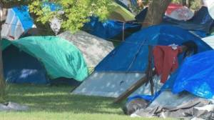 Edmonton community residents concerned about crime as encampment reaches capacity