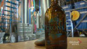 'What the hell is Cronk?': Calgarians sample brewery's resurrected recipe from the 1880s (01:38)