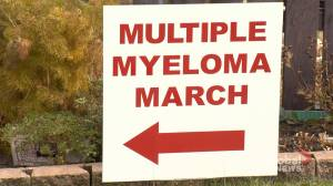 Saskatoon Multiple Myeloma March raises over $21K for research (01:27)