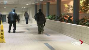 City of Edmonton lays out plans to help vulnerable citizens during cold snap