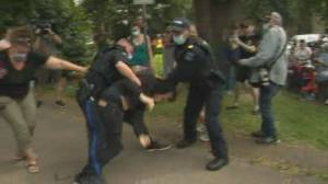 Petition launched for independent investigation into Halifax police (01:41)