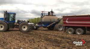 Alberta farmers seeding and hoping to get last year's crop off