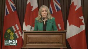 Major gaps in 'iron ring' Doug Ford promised for Ontario long-term care (02:40)