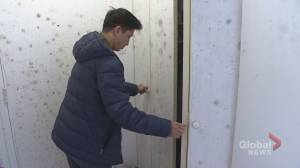 Some Montreal co-op buildings riddled with more than just mould