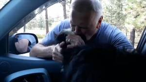 Watch the moment a dog is reunited with her family