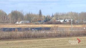 Homeowners express concerns over large solar expansion near Brooks, Alta.