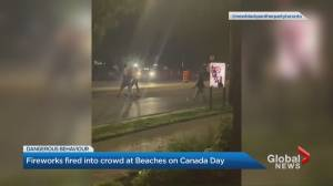 Several people arrested after fireworks allegedly shot into crowds in Toronto (02:00)