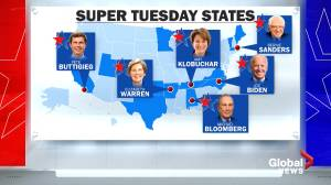 Democratic campaigns intensify as South Carolina primary, Super Tuesday approach