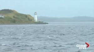 Dorian storm surge continues to build as hurricane approaches Canadian Maritimes (01:53)