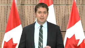 Coronavirus outbreak: Scheer blames Liberal 'technical issues' for aid not reaching all Canadians
