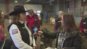 Giddy Up Rodeo Event aims to enrich lives of children with special needs