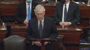 U.S. election: Mitch McConnell delivers rebuke to challenge of electoral votes (08:32)