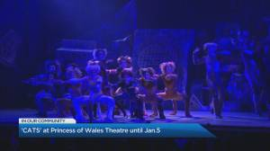 'Cats' returns to Toronto's Princess of Wales Theatre (04:36)