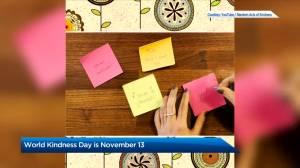 Learn more about World Kindness Day 2020 (01:55)