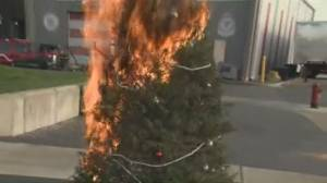 Christmas Decoration Safety Tips (04:27)