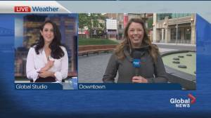 Global News Morning weather forecast: May 28, 2021 (01:32)