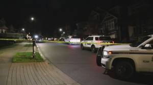Man killed in overnight stabbing in Maple Ridge (01:06)