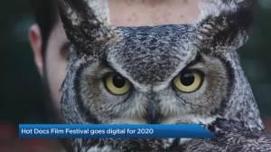 Hot Docs festival goes digital for 2020