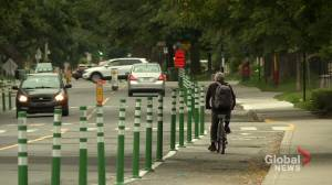 Controversial bike lane in Montreal's NDG to be dismantled (02:12)