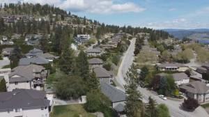 Bear alert in effect for West Kelowna's Rose Valley neighbourhood (02:12)