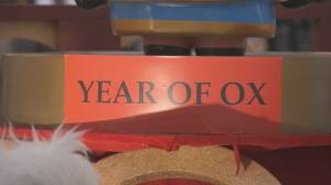Lunar New Year: welcoming Year of the Ox online (01:47)
