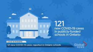 121 new COVID-19 cases reported in Ontario schools (02:17)