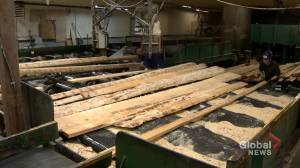 N.S. forestry industry concerned about Northern Pulp closure