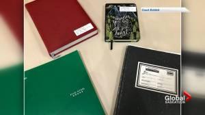 Blake Schreiner journals show conflicting accounts of drug use and Tammy Brown death (01:20)