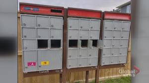 Residents in Calgary's Nolan Hill concerned over string of mailbox thefts