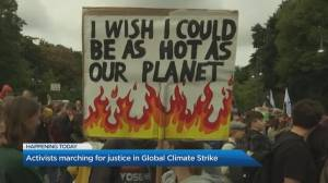 Why activists around the world are marching in the Global Climate Strike
