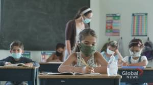 Coronavirus: Ontario government releases highly anticipated back-to-school plan (02:20)