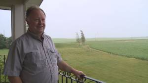 'Absolutely ideal': wet weather helping many southern Alberta farmers after several dry years (01:38)