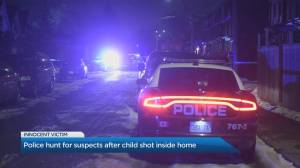 Hamilton police on the hunt for suspects after 7-year-old boy shot inside home (02:21)