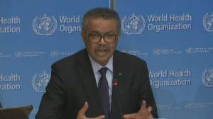 COVID-19: WHO director says countries must ask important questions to determine readiness for virus