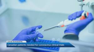 Canadian patients needed for coronavirus clinical trials (02:36)