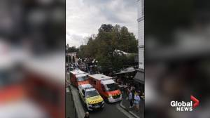 Car hits cafés at France's Fontainebleau Palace, several injured (00:30)