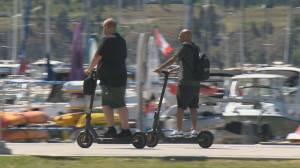 City staff to present e-scooter report to city council (02:24)