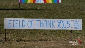 Coronavirus outbreak: Baie-d'Urfé residents create field of rainbows to thank front-line workers