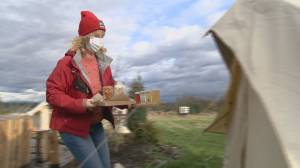 Fraser Valley cidery goes and plays outside to attract customers (01:45)
