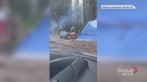 Warning issued for Alberta campground after bear encounter captured on video (02:14)