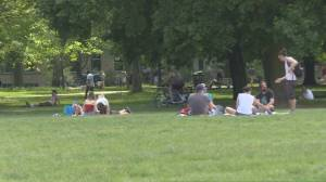 Coronavirus: Ontario government introduces 'social circles'