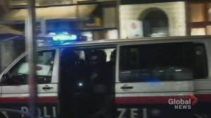 Vienna shooting: At least 1 dead, multiple injured after shots fired near synagogue (01:26)