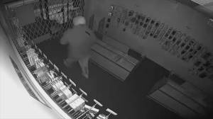 Cell phone store break in foiled by strong security gate