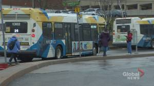Halifax Transit drivers refusing work after passengers forego masks (01:58)
