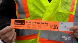 Tag-a-bag program for black carts to start in June, pending Calgary council approval