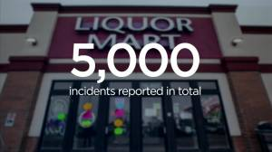 Pandemic year sees shifts in some Winnipeg crime stats: report (01:17)